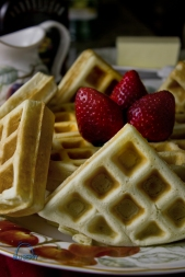 Waffles003 copy